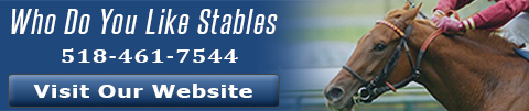 who_do_you_like_stables_banner